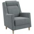 Кресло для отдыха Дилан (Ниж. и К) ТД 270