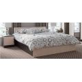 Кровать спальня ЭДМ 5 (160х200) венге/дуб млечный